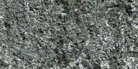 igneous random natural stone gray
