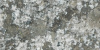igneous spots natural stone gray
