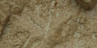 cracked/chipped natural   stone dark brown