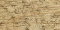 plywood cracked/chipped dirty weathered industrial wood tan/beige