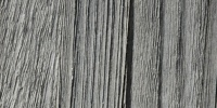vertical weathered bleached marine wood gray