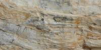 tan/beige stone tree/plant wood natural rough horizontal